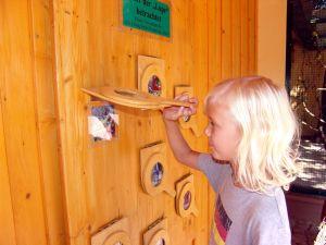Die achtjährige Malin wirft einen Blick hinter die Lupe aus Holz. (Foto: Christian Bettels)