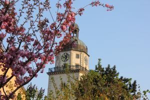 Nicolaikirchturm (Foto: der uNi)