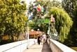der Inselzoo geschmückt zum Inselzoofest (Foto: der uNi)