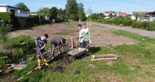 """Schülerfreiwilligen-Tag in der Gartenanlagen """"Glück Auf"""" und """"Bergmannsfreud"""" (Foto: privat)"""