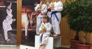 Sakuras erkämpfen 12 Titel (Foto: Verein)
