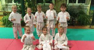 Erfolgreich auch bei Karate-Gürtelprüfungen (Foto: Sakura)