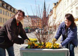Diana Eckstein und Ina Hasse (v.l.) bepflanzen die Blumenkübel.    (Foto: Ronny Seifarth)