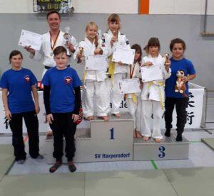 Rositzer Judoka haben Grund zum jubeln bei den offenen Landeseinzelmeisterschaften im Jiu Jitsu in Harpersdorf (Foto: privat)