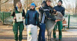Lydia Erler und Saskia Petzold vom Schmöllner Landhandel erhielten von Zoo-Leiterin Ingrid Kipping und Tierpfleger Vinzenz Schmid die Patenurkunde. Das Patentier wurde mit einer Möhre zum Fototermin gelockt. (Foto: Ronny Seifarth)
