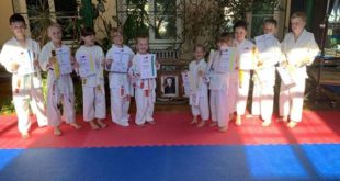 Gürtelprüfungen im Karatesport (Foto: Sakura Meuselwitz)