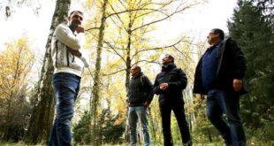 CDU-Fraktion Stadtrat Altenburg: Ein Kletterwald für Altenburg? (Foto: CDU)