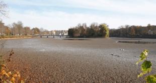 Wasserstand des Großen Teiches bleibt niedrig (Foto: Ronny Seifarth)