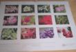 Kalender mit Motiven aus dem Botanischen Erlebnisgarten Altenburg